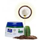 Кокосовый крем для восстановления поврежденных волос с экстрактом Кактуса Parachute Gold